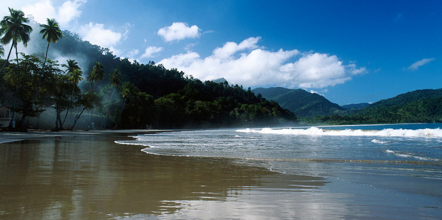 Sandy shores of a lush coastline in Venezuela